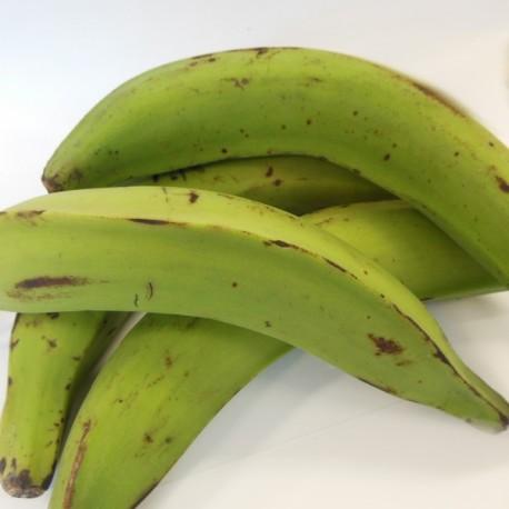 Banane plantain verte